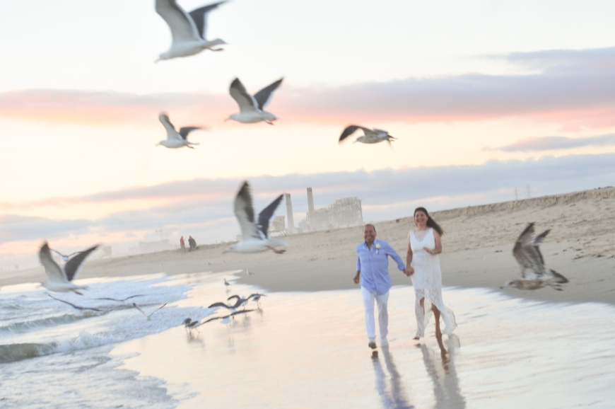carmelash_b_wedding_bride_groom_birdsonthe-beach